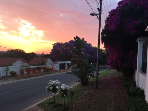 Sunset in front of our house in the spring.